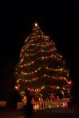 park-berkeley-california-berkeley-hills-tilden-park-herschell-spillman-merry-go-round-carousel-christmas-tree (berkeleyhomes-dot-com) Tags: carousel merrygoround tildenpark herschellspillman iraserkes serkes 5105266668 httpberkeleyhomescom iraberkeleyhomescom copyright2014iraserkes