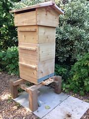 Customers Warre hive in situ