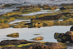 Punta Prima Menorca (Cristina Camps) Tags: paraiso menorca puntaprima