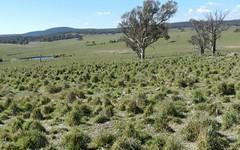 Gundary Park Kooringaroo Road, Goulburn NSW
