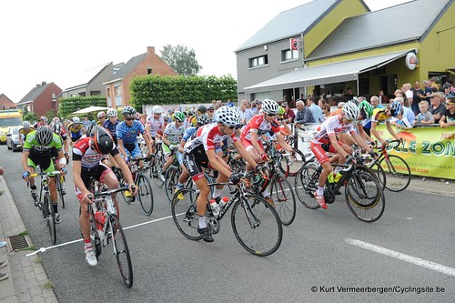 Geel Oosterlo  (35)