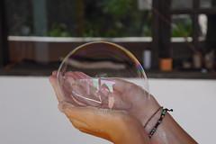 Reflected in a Bubble (simonturkas) Tags: summer abstract reflection art lumix photography photo flickr sunny lanzarote panasonic bubble tumblr artistsoftumblr photographersoftumblr ilobsterit