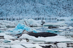 Fjallsrln Ice Lake (Wolfhowl) Tags: trip blue summer mountain lake ice nature june landscape iceland rocks glacier iceberg 2014 icelake fjallsrln
