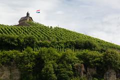 View @ the St. Donat Chapel, Wormeldange Luxembourg (troov) Tags: nature landscape outdoors vineyard vines scenery europe hiking flag chapel vineyards grapes luxembourg grapevine wormeldange e2 gr5 stdonat koeppchen köppchen stdonatchapel