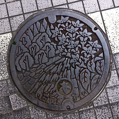 a delicate forest of flowers (troutfactory) Tags: flowers japan digital square design steel cover round  manhole  kansai  takatsuki ipod5