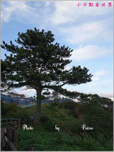 濟州島 偶來7小路 - 獨立岩 (19).JPG