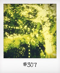 "#DailyPolaroid of 1-8-14 #307 • <a style=""font-size:0.8em;"" href=""http://www.flickr.com/photos/47939785@N05/14854476041/"" target=""_blank"">View on Flickr</a>"
