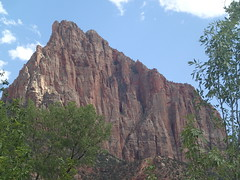 Looking Up (kzuhr) Tags: utah zion np