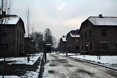 Auschwitz (012)