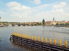 Prague - Art installation. (JohnVenice) Tags: penguins artwork czech prague praha charlesbridge vltava artinstallation kampa kampapark kampamuseum yellowpenguins crackingartgroup