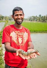 Shrimp Farmer Proud of Large Catch (USAID_IMAGES) Tags: india usaid education technology shrimp business farmer economy aquaculture extremepoverty worldfish shrimpfarmer