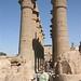 Luxor Temple_2495