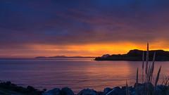 Invasoras (Carpetovetn) Tags: espaa costa marina mar spain europa amanecer cantabria castrourdiales cantbrico marcantbrico plumeros nex5n