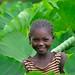 In the Taro Garden, Wollaita Tribe, Ethiopia