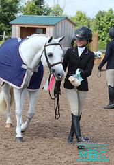 (000) IMG_2211 (laureljarvis) Tags: show horse jumping pony jumper hunter equestrian champions equine mbc rockwood tournaments angelstone mybarnchild