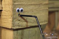 Thirsty (DMeadows) Tags: wood glass screw scotland eyes hole drink o glasgow straw odd waxy quirky googly bannister connors davidmeadows dmeadows davidameadows