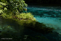 blue eye (filipe mota rebelo | 400.000 views! thank you) Tags: vacation water canon europe albania blueeye 2014 balcans fmr 5dmarkii filipemotarebelo