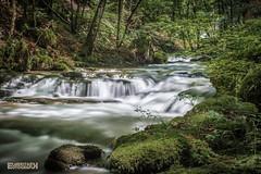 Cascades du Hérisson (Jura) - Au fil de l'eau (ElmerstarK) Tags: longexposure france waterfall jura cascade chutedeau longueexposition cascadesduhérisson