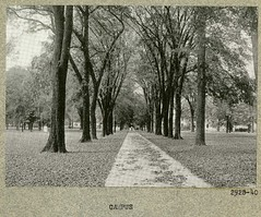 photo album 02928-01-ph40 (Olmsted Archives, Frederick Law Olmsted NHS, NPS) Tags: ohio oberlin oberlincollege