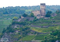 Castle along Rhine River (Kirk Stauffer) Tags: castle river germany nikon europe september german sep rhine sept kirk stauffer 2014 d4 kirkstauffer