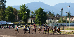 last race (n.a.) Tags: horse canada vancouver racetrack track bc racing horseracing hastings