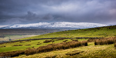 Ingleborough! (dazzbo1) Tags: colour landscape magnificent beautiful view wonderful peaks three dales yorkshire uk england hill hills walk hike winter snow mountain cloud weather storm sky grass sheep stone walls