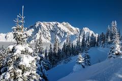 Hochkönig (Bergfex_Tirol) Tags: österreich alpen alps gebirge oesterreich bergfex hochkönig schnee baum blau tree blue snow alpes winter mountains austria dienten