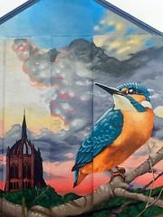 Kingfisher, Paisley, Scotland (Street Art) (alison2mcewan) Tags: kingfisher bird ornithology scotland scottish united kingdom mark worst ross dinnett coats memorial church alexander wilson mural street art painting artists