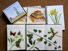 Sketchbooks 67/365 (Hornbeam Arts) Tags: