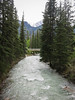 Johnston Canyon (dimthoughts) Tags: alberta banffnationalpark canada johnstoncanyon daytime nature outdoors water river forest naturallight