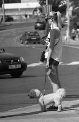 Kiev 4 + Jupiter-11 135/4 - Girl with a Doggie at Crosswalk (Kojotisko) Tags: street city people bw streets film person czech streetphotography brno cc creativecommons czechrepublic streetphoto persons kiev4 jupiter11 agfaphotoapxpan100 agfaphotoapx jupiter111354 agfaphotoapxpan