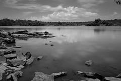 Swamp Guaniquilla (GOJR.) Tags: travel inexplore longexposure lagunaguaniquilla puertorico nikond600 nikon28f18g hoya 10 stop nd filter