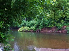 Lush jungle of...Neshaminy Creek (MissyPenny) Tags: usa green nature water creek landscape outdoor pennsylvania explore buckscounty langhorne neshaminycreek pdlaich