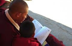 The Tibetan language is under threat, Tibet 2013 (reurinkjan) Tags: dzogchen 2013 yachengar བོད་ལྗོངས། ©janreurink tibetanplateauབོད་མཐོ་སྒང་bötogang tibetབོད buddhistསངས་རྒྱས་ཆོས་ལུགས་པ nunneryཨ་ནི་དགོན་པ་anidgonpa monkགྲྭ་བ།grwaba buddhismསངས་རྒྱས་ཆོས་ལུགས།sangsrgyaschoslugs yarchengar greatertibetབོད་ཆེན་པོböchenpo tibetannationalitytibetansབོད་རིགས།bodrigs tibetannationtibetanpeopleབོད་ཀྱི་མི་བརྒྱུདbökyimigyü nunཇོ་མོ།ani sisterhoodཨ་ནིའི་ཚོགས་པanitsokpa khamཁམས།easterntibet nyingmaredhatsectརྙིང་མrnyingma ༢༠༡༣ khamཁམས་བོད khamsbodkhamwö pelyülདཔལ་ཡུལ།county nyingmapahermitage yarchengonpaཡར་ཆེན་དགོན་པ་ yarchengarཡར་ཆེན་སྒར་ dzinchuཛིན་ཆུ་ lamaachukrinpoche yellegar rinchenlingpa yachengönཡ་ཆེན་དགོན། yachengarཡ་ཆེན་དཀར་། stupaམཆོད་རྟེན༏mchodrtenchorten yarchengön