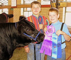 "Land of Lincoln Intermediate Div Champion IL State Fair '08 • <a style=""font-size:0.8em;"" href=""http://www.flickr.com/photos/25423792@N05/14437750172/"" target=""_blank"">View on Flickr</a>"