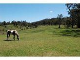 2385 Mount Darragh Road, Wyndham NSW