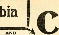 Anglų lietuvių žodynas. Žodis weeber reiškia <li>Weeber</li> lietuviškai.
