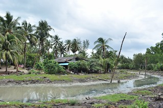 Nakhon Sri Thammarat