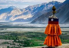 Vallée de la Nubra (josboyer) Tags: india ladakh inde nubra