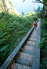 Capri - Italia (laurentzim) Tags: blue shadow red sea italy woman mer tree green stairs walking island capri italia angle hiking 14 wide ile grand best ombre bleu 24 arbre escalier italie chemin randonne marcher d700