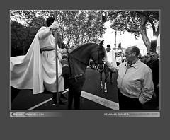 El hombre que susurraba a los caballos (Chema Concellon) Tags: valladolid semanasanta 2011 chemaconcelln valladolidcofrade