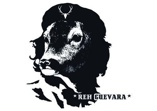 reh-guevara-1-farbig_DRUCK_Männer