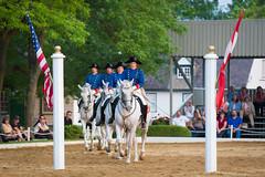 Quadrille Crossing (jeff_a_goldberg) Tags: summer illinois unitedstates equestrian quadrille dressage oldmillcreek lipizzans templelipizzan
