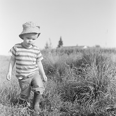 Exploring The Countryside (_-0-_) Tags: boy white black film grass walking child meadow mat 124g medium format stroll yashica yashicamat yashicamat124g