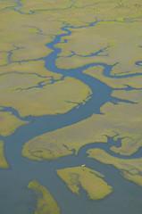 Kayak Lost in Marsh (towpilot guy) Tags: water kayak florida wetlands marsh staugustine intercoastal