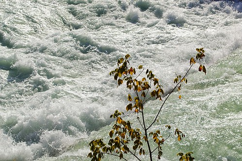 "Cascata • <a style=""font-size:0.8em;"" href=""http://www.flickr.com/photos/121308622@N02/14950649315/"" target=""_blank"">View on Flickr</a>"