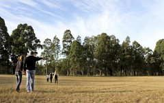 Lot 103 Sattler Circuit, Singleton NSW