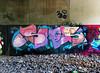 41shots Baalone (carnagenyc) Tags: nyc newyork brooklyn graffiti host baal 41shots dym host18 baalone