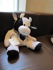Moo E Cow at the Conrad (bakey333) Tags: japan tokyo conrad mooecow