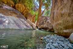 Natural pool (yelouair) Tags: trees water pool nikon canyon valley saudiarabia hdr